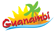 Logo-Guanambi